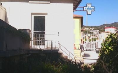 Clinique Vétérinaire du Col à Nice
