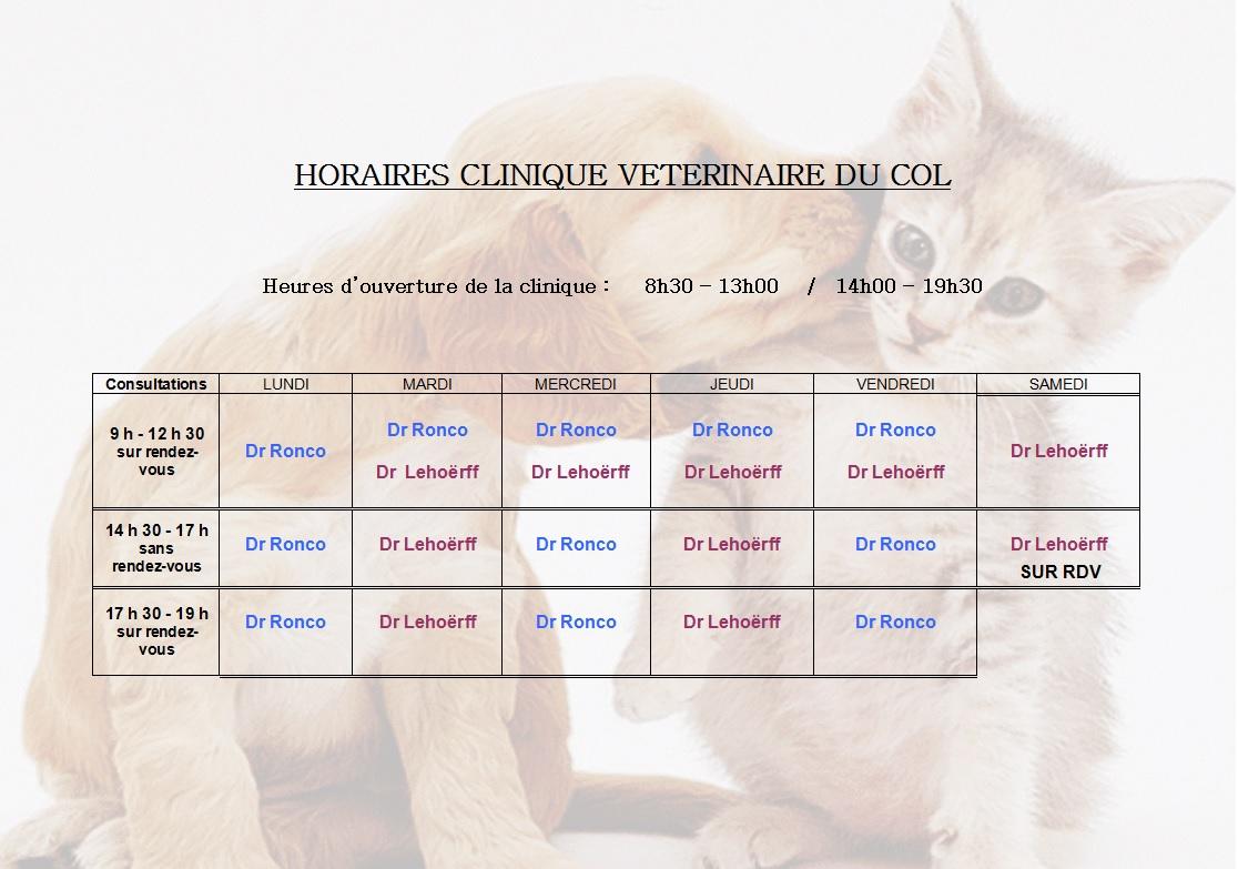 clinique vétérinaire à Nice