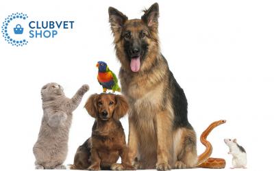 Boutique de vente en ligne, Clubvet Shop
